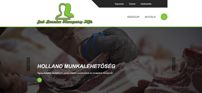 jobservicehungary_hu